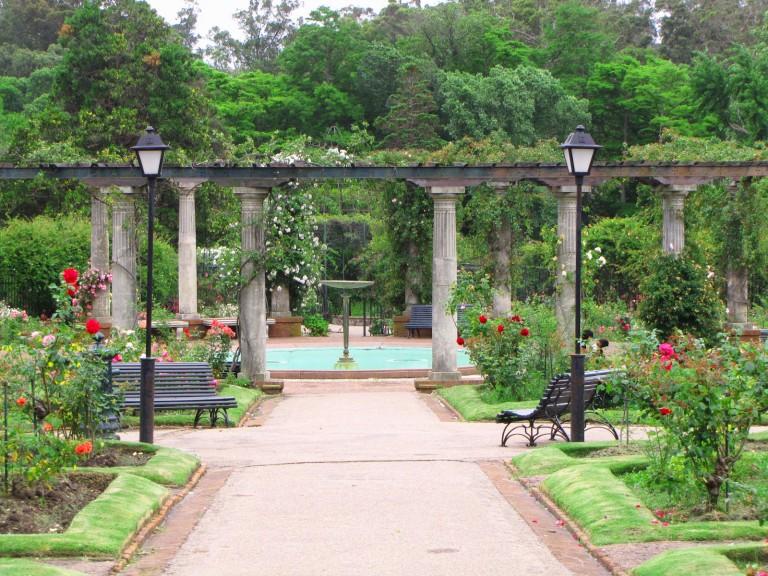 Jard n bot nico for Jardin botanico numero telefonico
